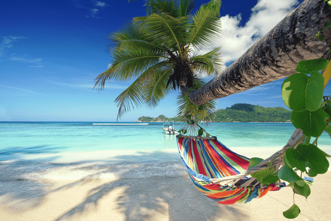 Mit Reisegeier ab in den Urlaub